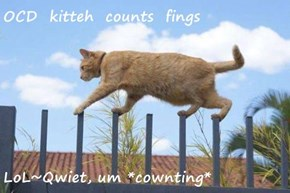 OCD  kitteh  counts  fings  LoL~Qwiet, um *cownting*