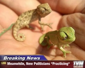 Breaking News - Meanwhile, New Politicians *Practicing*