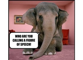 WHO ARE YOU CALLING A FIGURE OF SPEECH!