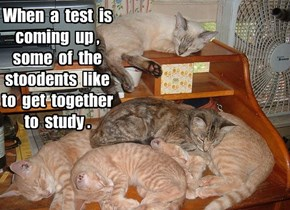 KKPS: Cramming for a test