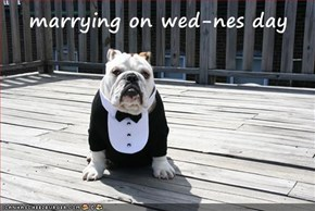 marrying on wed-nes day