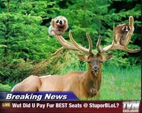 Breaking News - Wut Did U Pay Fur BEST Seats @ StuporBLoL?