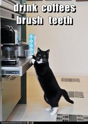drink  coffees  brush   teeth