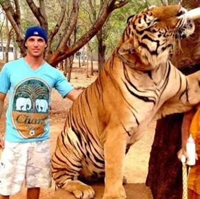 11 Tigers on Tinder Profiles