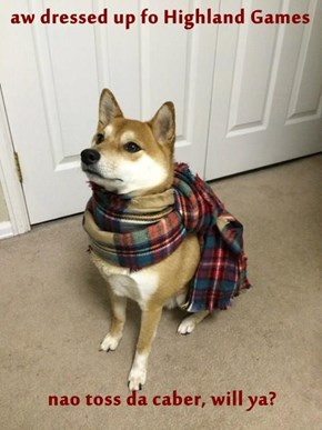 aw dressed up fo Highland Games  nao toss da caber, will ya?