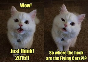 I Was Promised Flying Cars!!