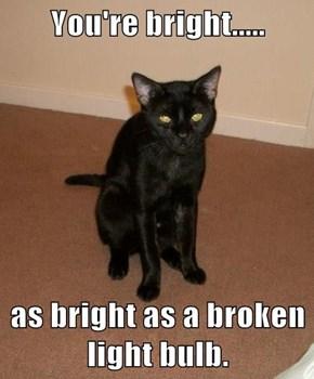You're bright.....  as bright as a broken light bulb.