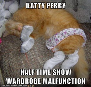 KATTY PERRY  HALF TIME SHOW                                       WARDROBE MALFUNCTION