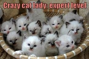 Crazy cat lady: expert level