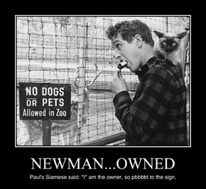 NEWMAN...OWNED