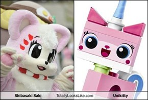 Shibasaki Saki Totally Looks Like Unikitty