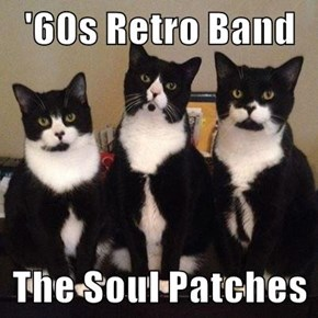 '60s Retro Band  The Soul Patches