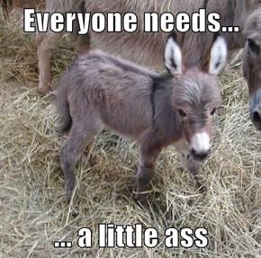 Everyone needs...  ... a little ass