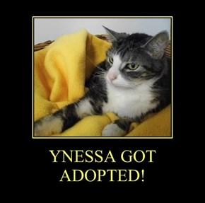 YNESSA GOT ADOPTED!