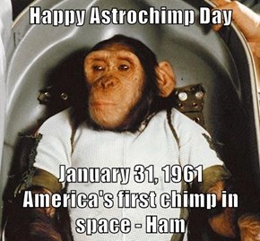 Happy Astrochimp Day  January 31, 1961                         America's first chimp in space - Ham