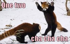 One two                       cha cha cha