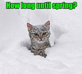 How long until spring?