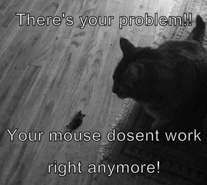 There's your problem!!   Your mouse dosent work right anymore!