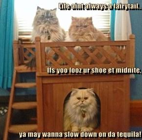 Life aint always a fairytail.. Ifs yoo looz ur shoe et midnite, ya may wanna slow down on da tequila!