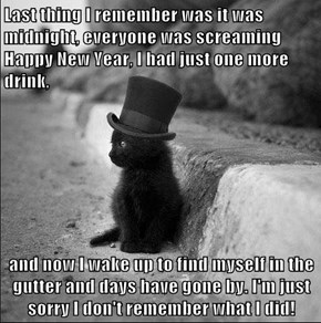 Last thing I remember was it was midnight, everyone was screaming Happy New Year, I had just one more drink,  and now I wake up to find myself in the gutter and days have gone by. I'm just sorry I don't remember what I did!