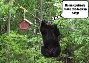 Bear with it, Yogi!