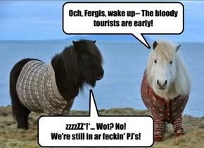 Early One Mornin on Shetland Island
