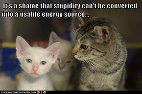 It's a shame that stupidity can't be converted into a usable energy source...