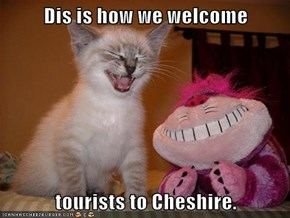 Dis is how we welcome  tourists to Cheshire.