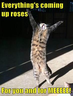Everything's coming up roses  For you and for MEEEEE!