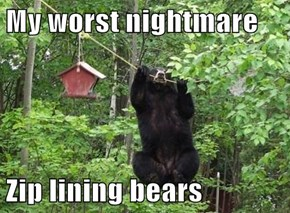 My worst nightmare  Zip lining bears