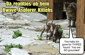 The realities of Bwave Asplorer Kitteh-ism
