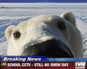 Breaking News - SCHOOL CCTV - STILL NO SNOW DAY