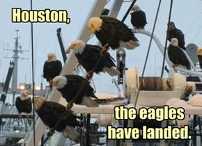 Seriuosly Houston, What do We do Now?