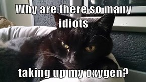 Why are there so many idiots  taking up my oxygen?
