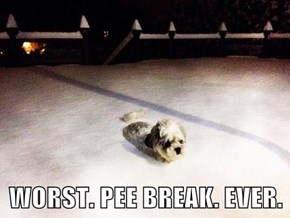 WORST. PEE BREAK. EVER.