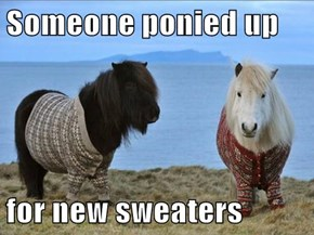 Someone ponied up   for new sweaters
