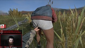 All You Need to Know About DayZ