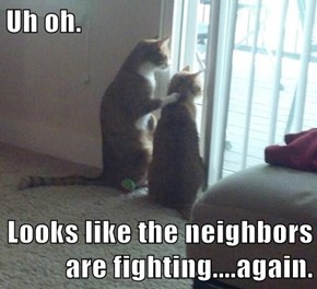 Uh oh.  Looks like the neighbors are fighting....again.
