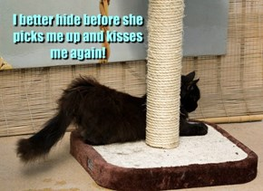I better hide before she picks me up and kisses me again!