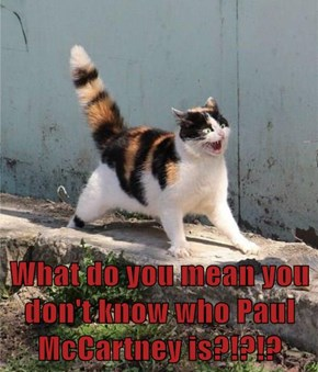 What do you mean you don't know who Paul McCartney is?!?!?