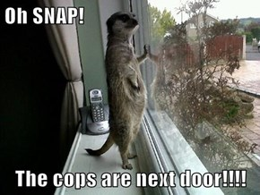 Oh SNAP!  The cops are next door!!!!
