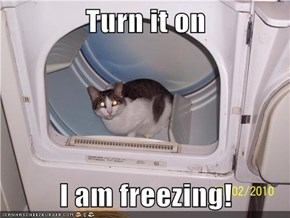 Turn it on  I am freezing!