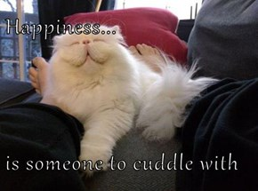 Happiness...  is someone to cuddle with