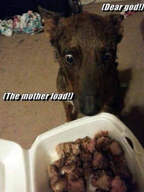 (Dear god!)  (The mother load!)