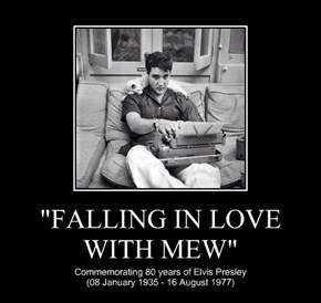 """""""FALLING IN LOVE WITH MEW"""""""