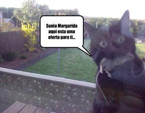 Sonia Margarida aqui esta uma oferta para ti...