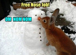 Noseless is the New Nosed
