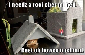 I needz a roof ober mi hed.  Rest ob howse opshinul.
