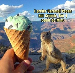 I  prefer  Caramel  Pecan  Nut  Crunch.   But   I   could  do  Mint.