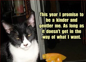 This  year  I  promise  to  be  a  kinder  and  gentler  me.  As  long  as  it  doesn't  get  in  the  way  of  what  I  want.